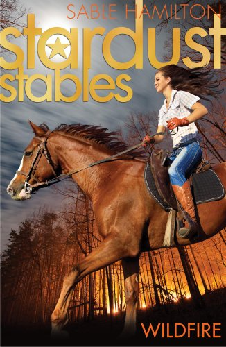 9781847153692: Wildfire (Stardust Stables)