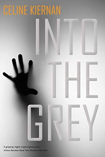 9781847178640: Into the Grey