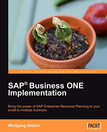 9781847196385: SAP Business ONE Implementation