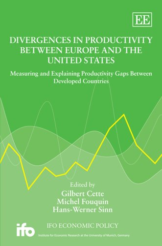9781847206411: Divergences in Productivity Between Europe and the United States: Measuring and Explaining Productivity Gaps Between Developed Countries (Ifo Economic Policy)