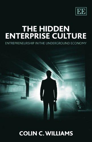 9781847207944: The Hidden Enterprise Culture: Entrepreneurship in the Underground Economy