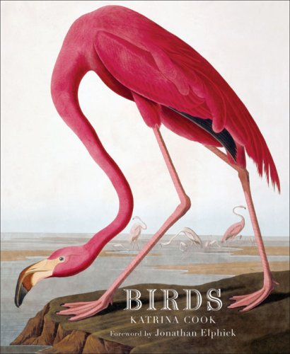 Birds: Cook, Katrina