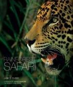 9781847321244: Rainforest Safari