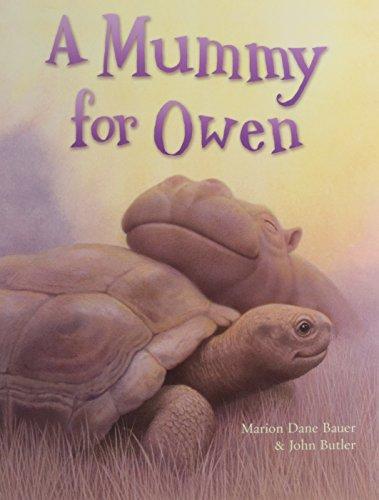 9781847380951: A Mummy for Owen