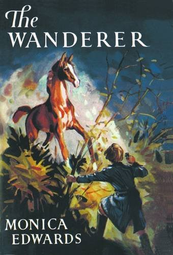 9781847451477: The Wanderer (Punchbowl Farm)