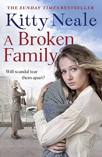 9781847562449: A Broken Family