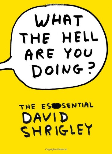 9781847678591: What the Hell Are You Doing?: The Essential David Shrigley