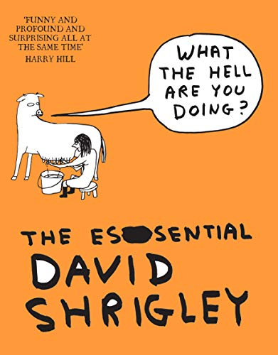 9781847678638: What The Hell Are You Doing?: The Essential David Shrigley