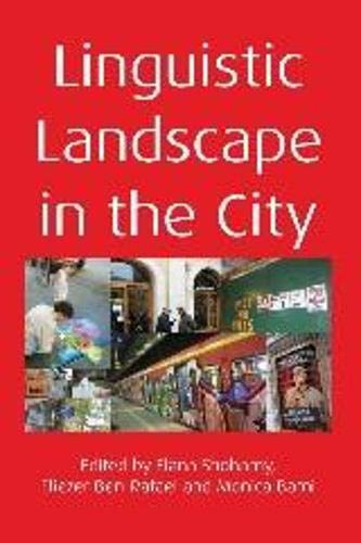 9781847692986: Linguistic Landscape in the City