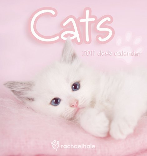 9781847707864: Official Rachael Hale Cats 2011 Desk Easel Calendar