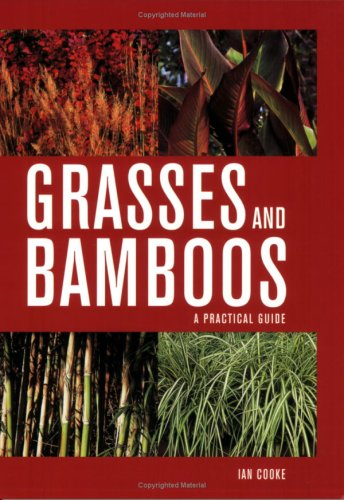 9781847733382: Grasses and Bamboos