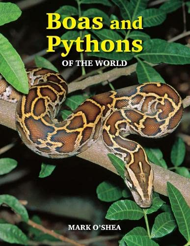 9781847738721: Boas And Pythons Of The World