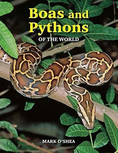 9781847738721: Boas And Pythons Of The World