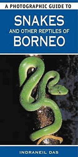 9781847738813: A Photographic Guide to Snakes & Other Reptiles of Borneo
