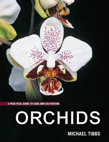 9781847738820: Orchids