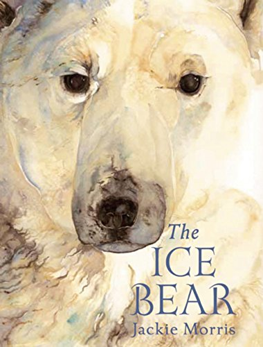 9781847805485: The Ice Bear Mini Edition