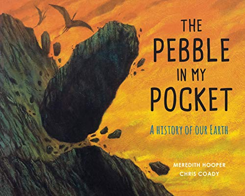 9781847807687: The Pebble in my Pocket: A History of Our Earth