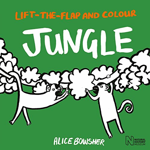 9781847809308: Lift-the-flap and Colour Jungle