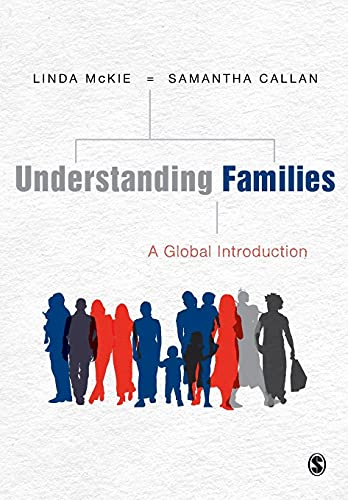 9781847879325: Understanding Families: A Global Introduction