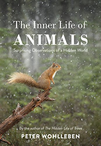 The Inner Life of Animals: The Bodley Head