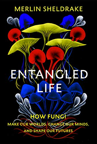 9781847925190: Entangled Life: How Fungi Make Our Worlds, Change Our Minds and Shape Our Futures