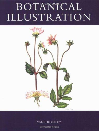 9781847970510: Botanical Illustration
