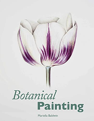 9781847972774: Botanical Painting