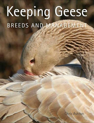 9781847973368: Keeping Geese: Breeds and Management