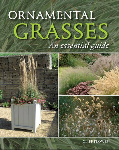 Ornamental Grasses: An Essential Guide: Plowes, Cliff