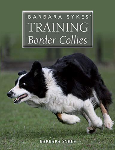 9781847978899: Training Border Collies