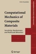 9781848007239: Computational Mechanics of Composite Materials