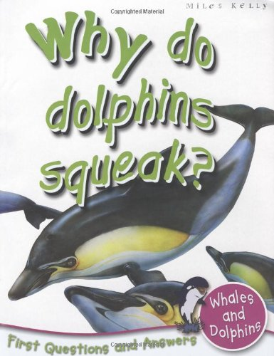 9781848101692: Whales And Dolphins: Why Do Dolphins Squeak? (First Questions And Answers) (First Q&A)