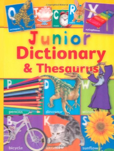9781848104792: Junior Dictionary and Thesaurus