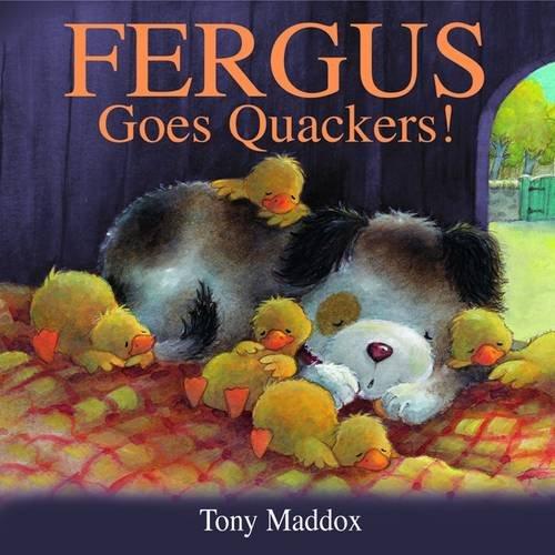 9781848122536: Fergus Goes Quackers!