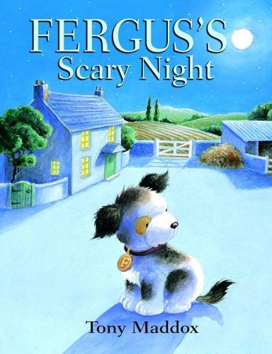 9781848122970: Fergus's Scary Night