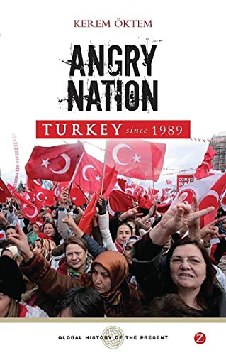9781848132108: Angry Nation: Turkey Since 1989 (Global History of the Present)