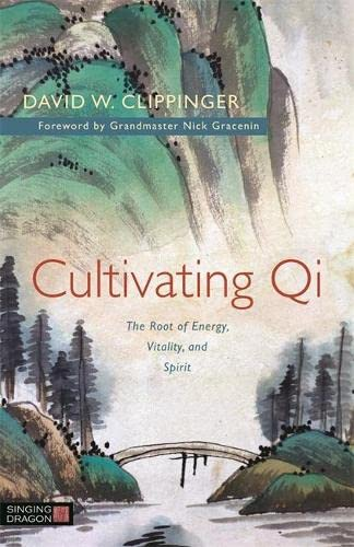 9781848192911: Cultivating Qi
