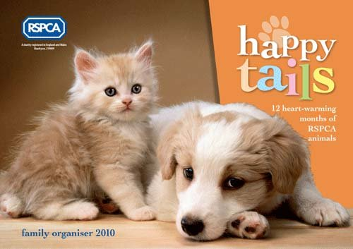 9781848203983: Happy Tails RSPCA Calendar 2009
