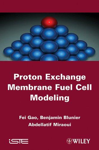 9781848213395: Proton Exchange Membrane Fuel Cells Modeling