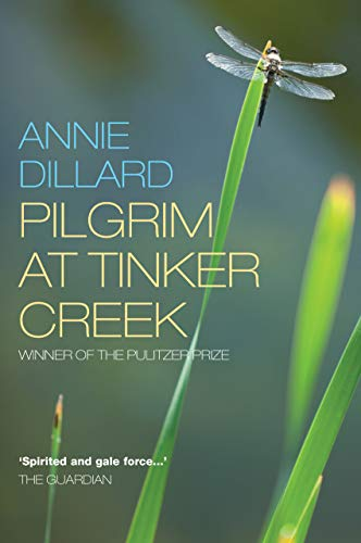 9781848250789: Pilgrim at Tinker Creek