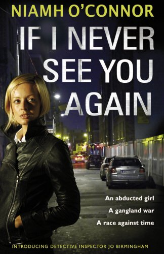9781848270916: If I Never See You Again (A Jo Birmingham Thriller)