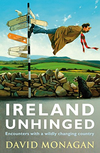 9781848271074: Ireland Unhinged
