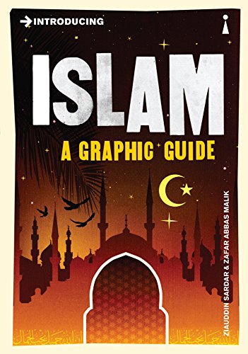 9781848310841: Introducing Islam: A Graphic Guide
