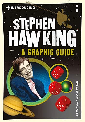 9781848310940: Introducing Stephen Hawking