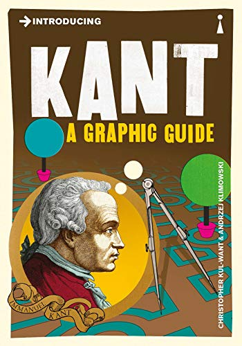 9781848312098: Introducing Kant: A Graphic Guide