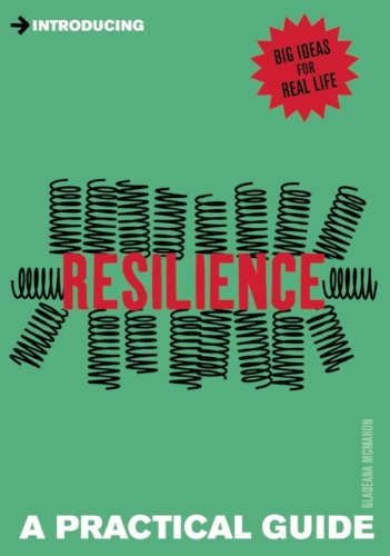 9781848315129: Introducing Resilience: A Practical Guide