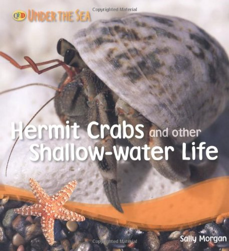 Hermit Crabs And Other Shallow Water Life (Qed Under The Sea)