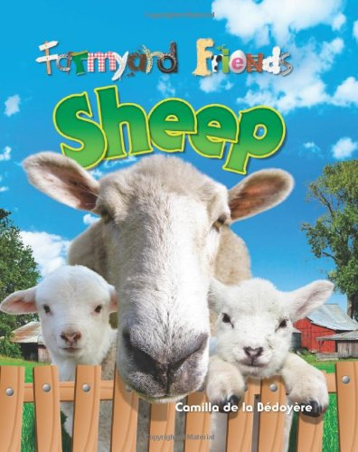9781848353411: Sheep (Farmyard Friends)