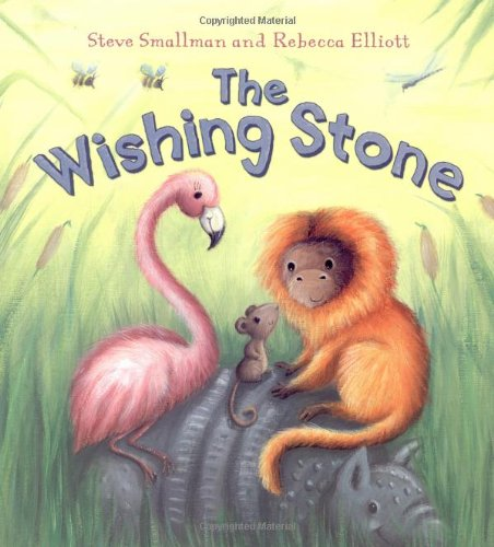9781848353695: The Wishing Stone (Storytime