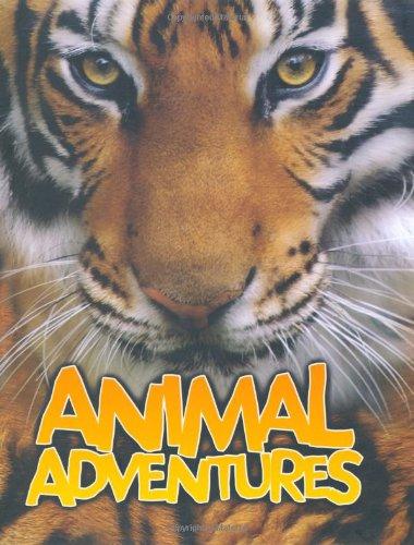 Animal Adventures (Hardcover): Sally Morgan